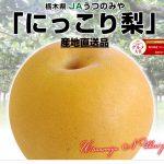 鉄腕ダッシュで紹介された山口果樹園の巨大梨の通販はこちら!